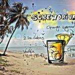 screwdriver-837046_640